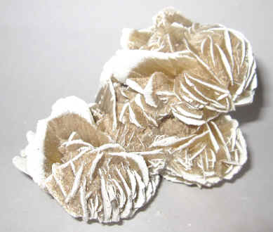 Desert Rose Selenite Crystal Mineral Specimen For Sale